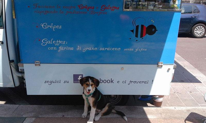 Kommunikation und Marketing für Food Trucks und Street Food-Aktivitäten